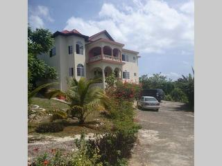 Nice House with A/C and Hot Tub - Negril vacation rentals