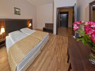 Nice Condo with Internet Access and A/C - Velingrad vacation rentals
