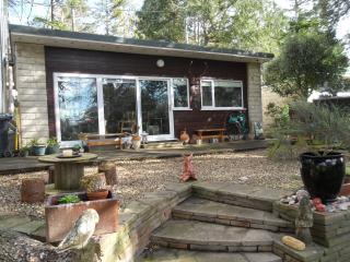 Woodland retreat nr beach and exmoor national park - Old Cleeve vacation rentals