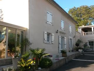 "MAISON ""LES ORCHIDEES"" AU CHARME ATYPIQUE - Jaunay-Clan vacation rentals"