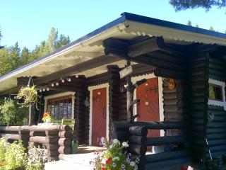 1 bedroom Villa with Central Heating in Tammela - Tammela vacation rentals