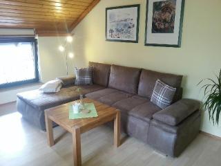 LLAG Luxury Vacation Apartment in Weissenstadt - 721 sqft, comfortable, quiet (# 2139) - Weissenstadt vacation rentals
