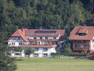 Guest Room in Winden im Elztal - Hörnleberg (# 9641) - Winden im Elztal vacation rentals
