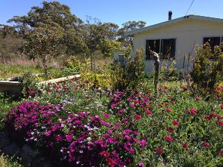 Cozy 3 bedroom House in Currarong with Television - Currarong vacation rentals
