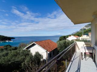 Apartments Dalmatin(Zuljana) - Two-Bedroom Apartment 2 - Zuljana vacation rentals