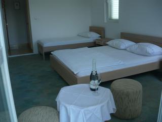 Apartments Marijana-Double Room with Balcony 1 - Loviste vacation rentals