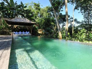 Comfortable Villa with Internet Access and A/C - Peliatan vacation rentals
