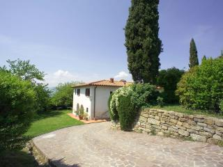 I Trebbiali - Reggello vacation rentals