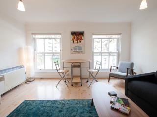 London, spacious one double bedroom apartment - London vacation rentals
