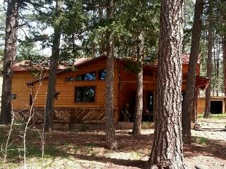 Colorado Mountain Cabin Retreat - Beulah vacation rentals