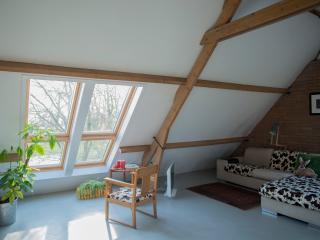 B&B boerderij-loft Het Achterste Pothoven - Terwolde vacation rentals