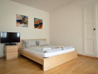 Charming Zurich Apartment rental with Deck - Zurich vacation rentals