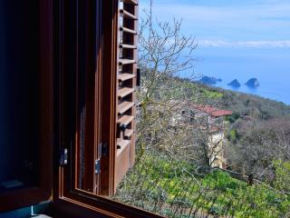 Cottage degli ulivi .   Syren island view. - Sorrento vacation rentals