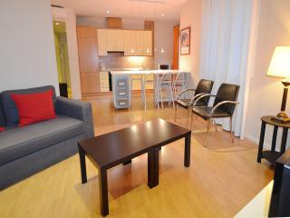Nice Condo with Internet Access and Central Heating - Madrid vacation rentals