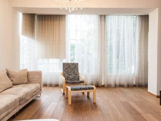Basel 46 Apartment - Tel Aviv vacation rentals