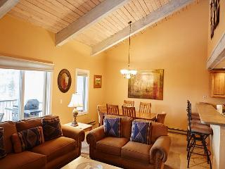 Warm & Cozy 3BR Snowmass Condo - Snowmass Village vacation rentals