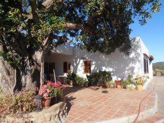 FINCA TYPIQUE - SANT LLORENC DE BALAFIA - San Lorenzo vacation rentals