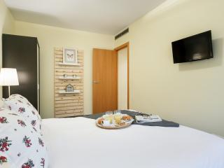 Ap. San Luis 22, 9min. by tube to center Barcelona - Barcelona vacation rentals