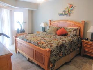 Oceanwalk 2bd 2 ba Condo - New Smyrna Beach vacation rentals
