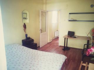 Private room central sultanahmet old city - Istanbul vacation rentals