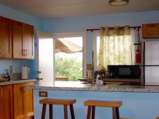Hillside View, WiFi, Outdoors Lanai BBQ - Kailua vacation rentals