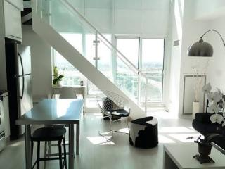 1 bedroom Penthouse with Internet Access in Toronto - Toronto vacation rentals