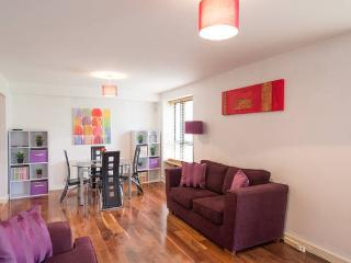 Modern city apartment with parking - Dublin vacation rentals