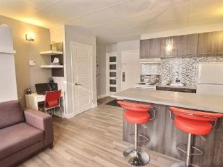 Nice Studio with Internet Access and A/C - Quebec City vacation rentals