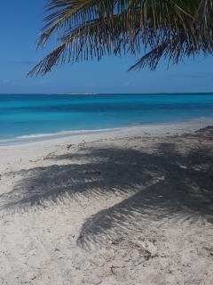 New Lisitng Discount SEA GRAPE Beachfront Free Car - Tar Bay vacation rentals