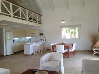 Pent-house in second level of comercial mall - Ixtapa vacation rentals