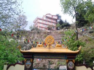 Shimla View Home ,Panthaghati,Shimla,Himachal Pradesh - Shimla vacation rentals