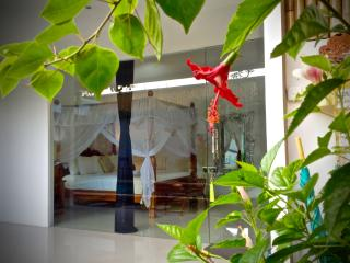 Seminyak 2 bedroom Lux. villa  Location location!! - Seminyak vacation rentals