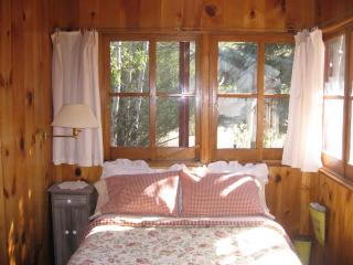 Charming romantic vintage log cabin - Estes Park vacation rentals