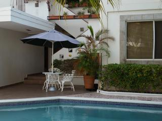 1 BedRoom Furnished Apartment. Pool.WiFi.Cleaning - Managua vacation rentals