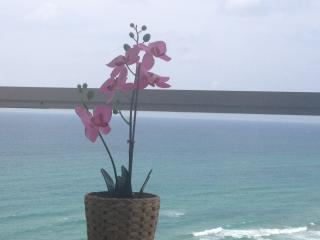 NEWLY RENOVATED, AMAZING SEA VIEW with TERRACE - Ramat Hasharon vacation rentals