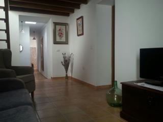 Cosy and brand new original Canary cottage - Los Silos vacation rentals