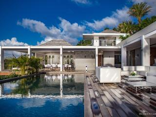 Comfortable Villa with Internet Access and Fitness Room - Gustavia vacation rentals