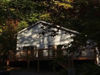 White Deer - 134 Cabin Mountain Road - Canaan Valley vacation rentals