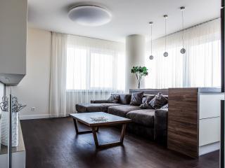 Romantic Condo with Dishwasher and Balcony - Klaipeda vacation rentals