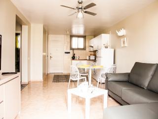 2 Bedroom Apartment in Parque Santiago 2 - Playa de las Americas vacation rentals