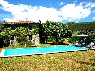 House with private pool/garden 500m from village - Villa Collemandina vacation rentals