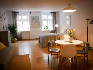 Studio / Old Town / with breakfast - Poznan vacation rentals
