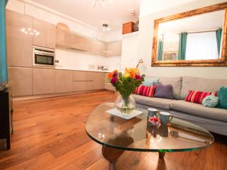 Luxury 1 bed apartment between Kings Cross & City - London vacation rentals