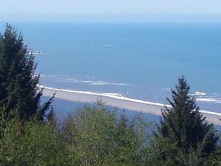 Private Coastal Views 4 Bdrm Cabin on the Ridge - Trinidad vacation rentals