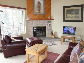 BR104C Prime Condo w/Great Views, Wifi, Fireplace, Clubhouse & Carport - Silverthorne vacation rentals