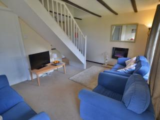 Fresh bright lodge with views and facilities -40TC - Saint Erth Praze vacation rentals