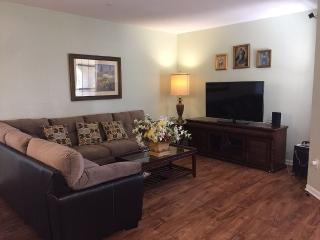 Affordable newly decorated condo with resort style - Clearwater vacation rentals
