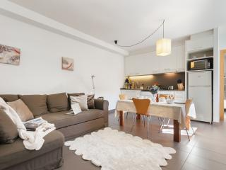 Cornellalux 214 - Barcelona vacation rentals