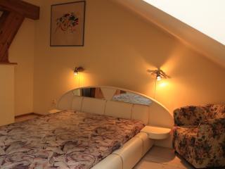simple 2 floor apt with views - Vilnius vacation rentals