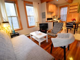N. End gem 2 bds for 4-6 best Price Location ( m3) - Boston vacation rentals